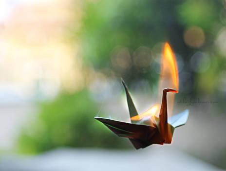 Crane Flame