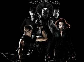 S.H.I.E.L.D. by Hannu-Illustration
