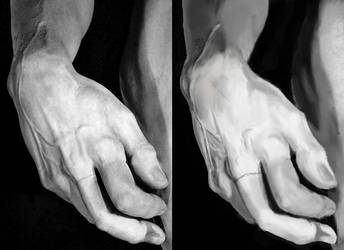 Hand Study by riotweekend