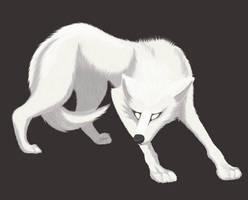 Little White Wolf