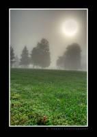 Ball of Fog by rpieratt