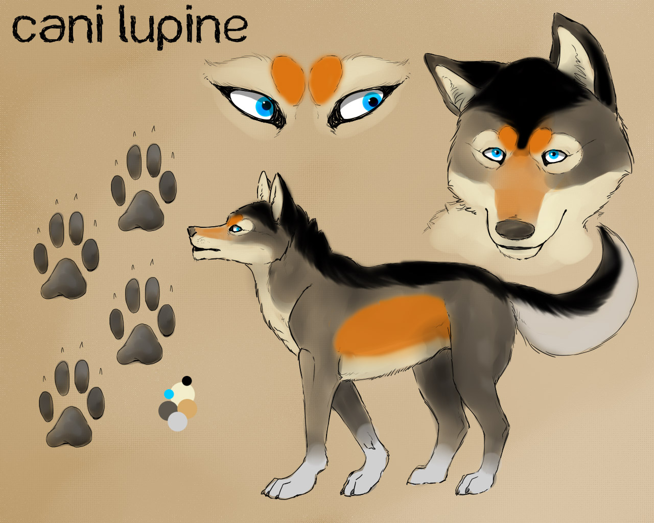 New Cani Lupine ref
