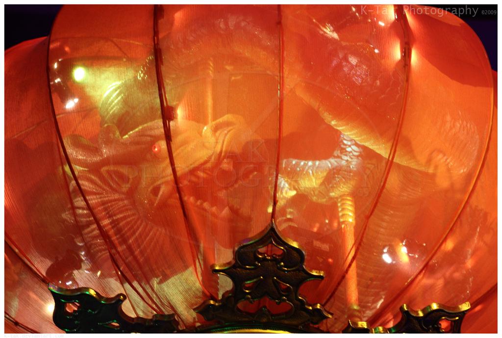 Lantern Dragon by K-Tak