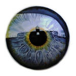 Eye - human frontier