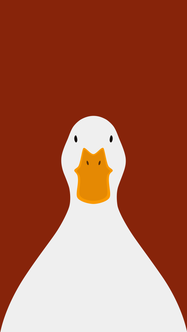 Domestic Duck  - bird wallpaper for iPhone