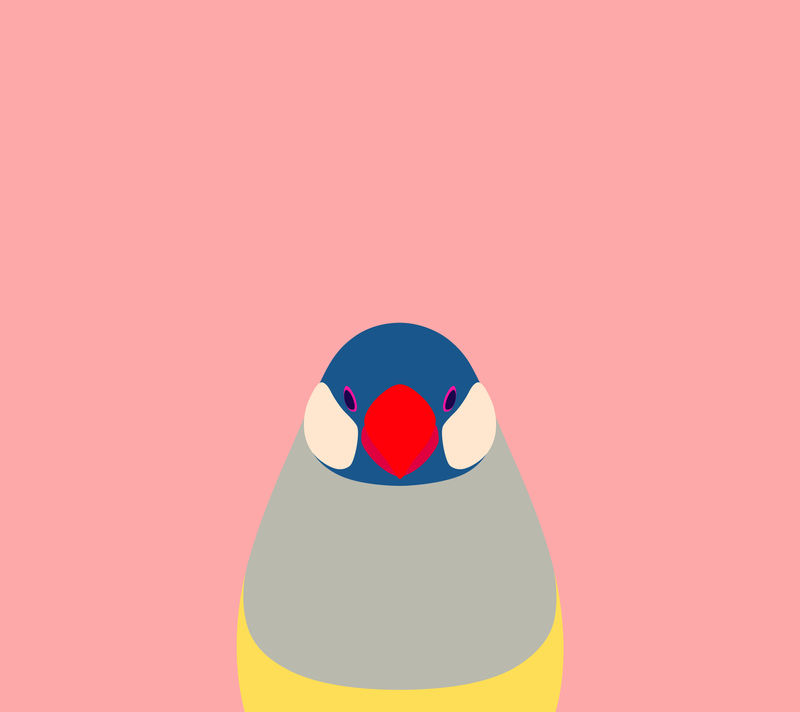 Pink Java Sparrow Wallpaper for Android