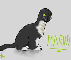 Marw by electromakerproD
