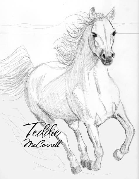 Running Horse Drawing In Pencil