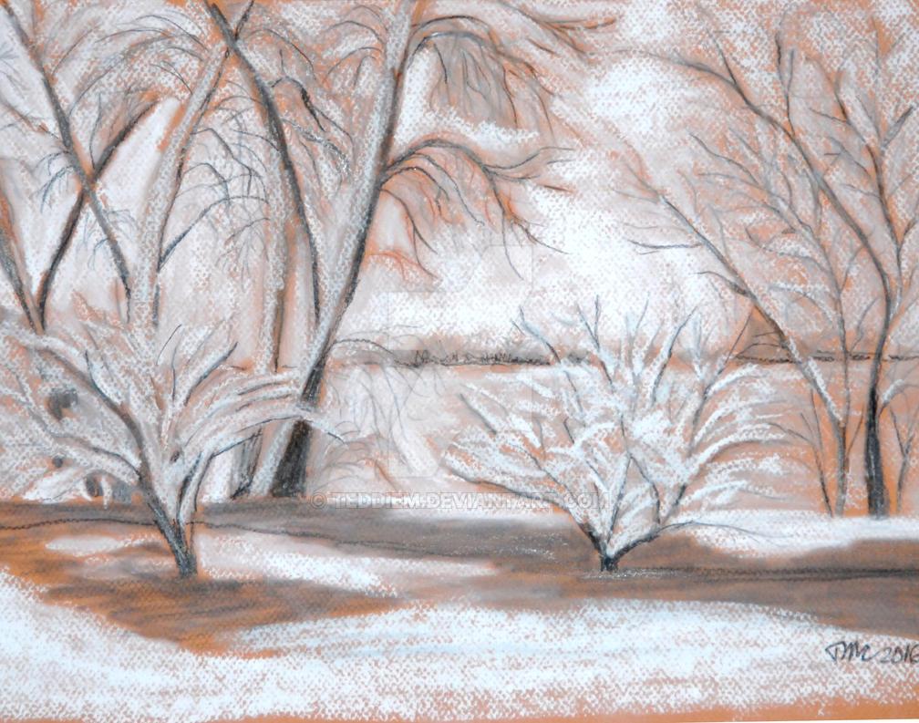 Winter by the Lake by teddiem