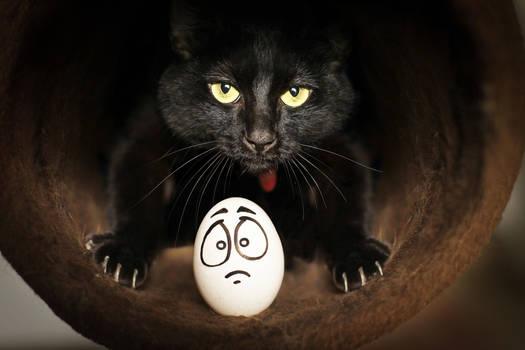 Eggbert's New Years CATastrophe!