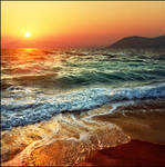 Ocean of possibilities