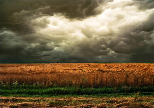 Mistimed tempest