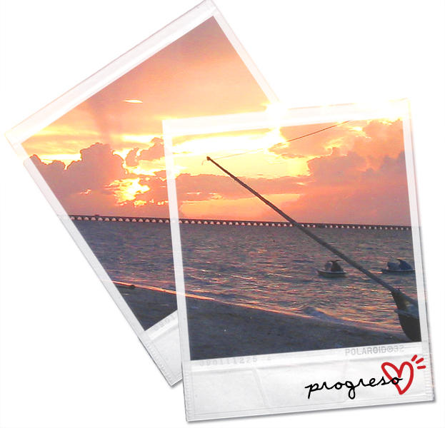 Polaroids by lilbrokenangel