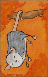 Marshmallow Possom by Twitchy-Kitty-Studio