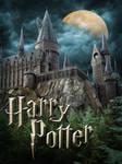 Potter Castle