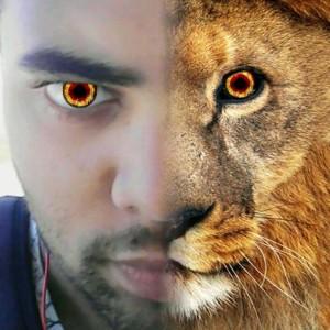 FireLionChang's Profile Picture