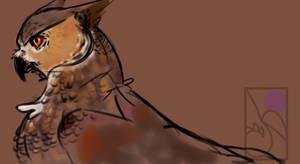 owl gryphon??????