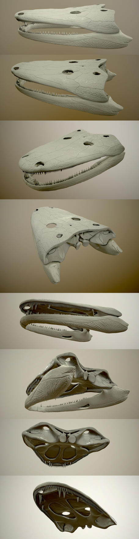 Cyclotosaurus intermedius. by AnthodonKR
