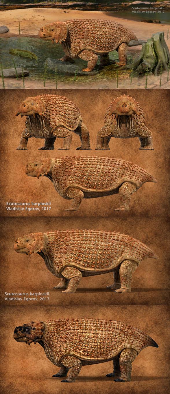 Scutosaurus karpinskii by AnthodonKR