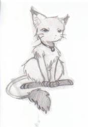 Kitty by Flos-Abysmi