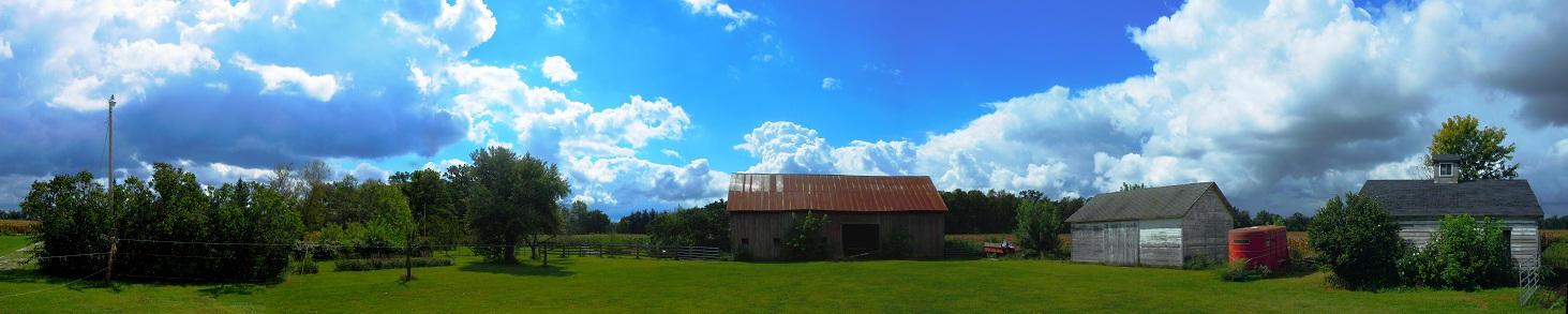 The Farm 3532