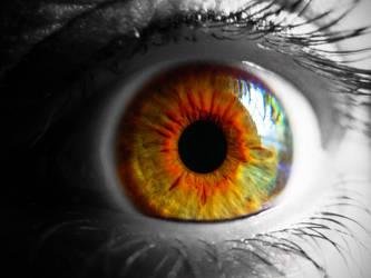 Hypnotized 3588
