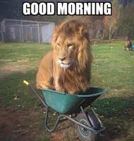 Good Morning U by SHAIRL