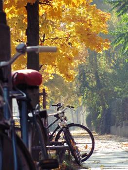those autumn days...