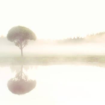 Mist by Varjoaine