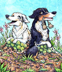 Pet Commission - The Playful Two