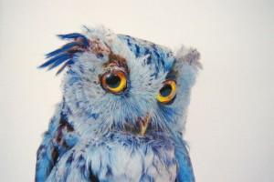 Joya-Filomena's Profile Picture
