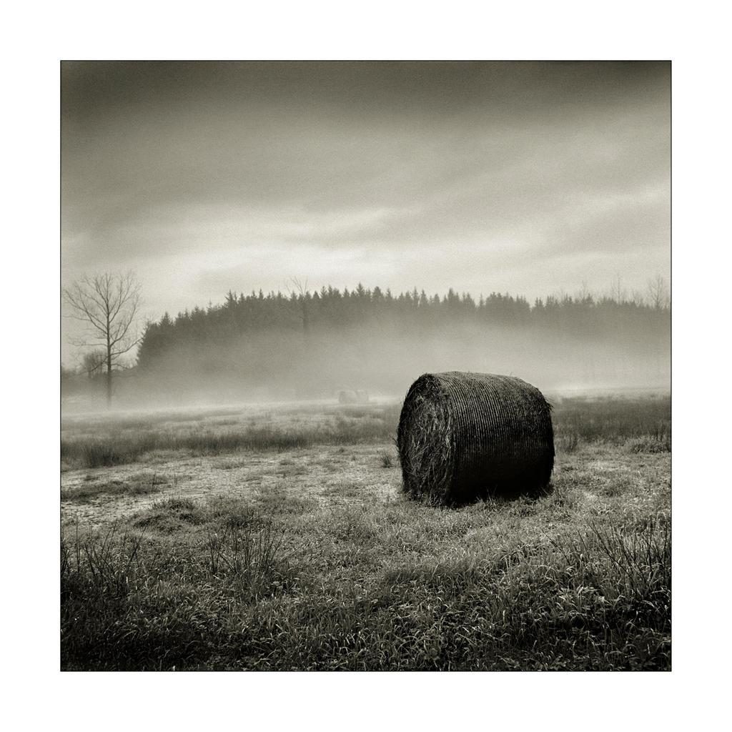 Prairie mysterieuse. by Yannersatz