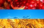 Nature Flag of Armenia