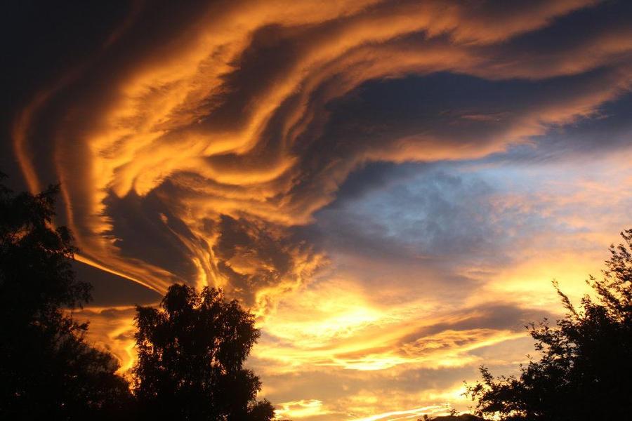 Heavens Wing by BloodyWolf249