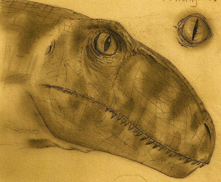 Dromaeosaur's Profile Picture