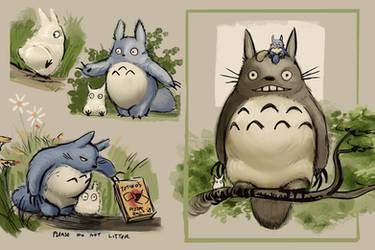 Totoro by knockabiller