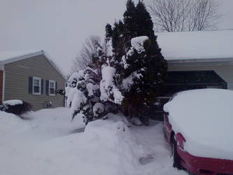 snow part 1