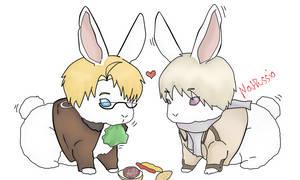 Hetalia:RusAme-Bunny-time