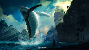 The Whale Appearance