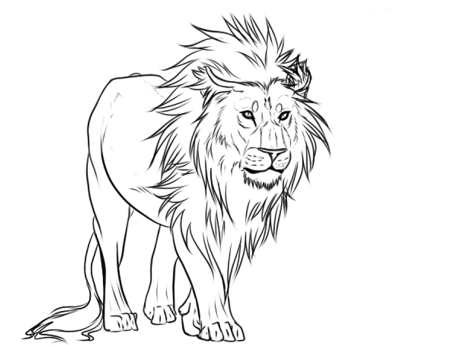 Line Drawing Lion : Lion lines by yami maru on deviantart
