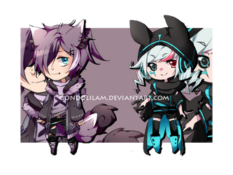 Adopts Auction Closed 28