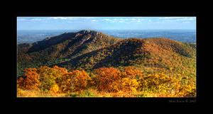 Fall Colors pt.2