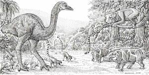 Pleistocene Madagascar