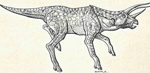 Cursorial Ceratopsian