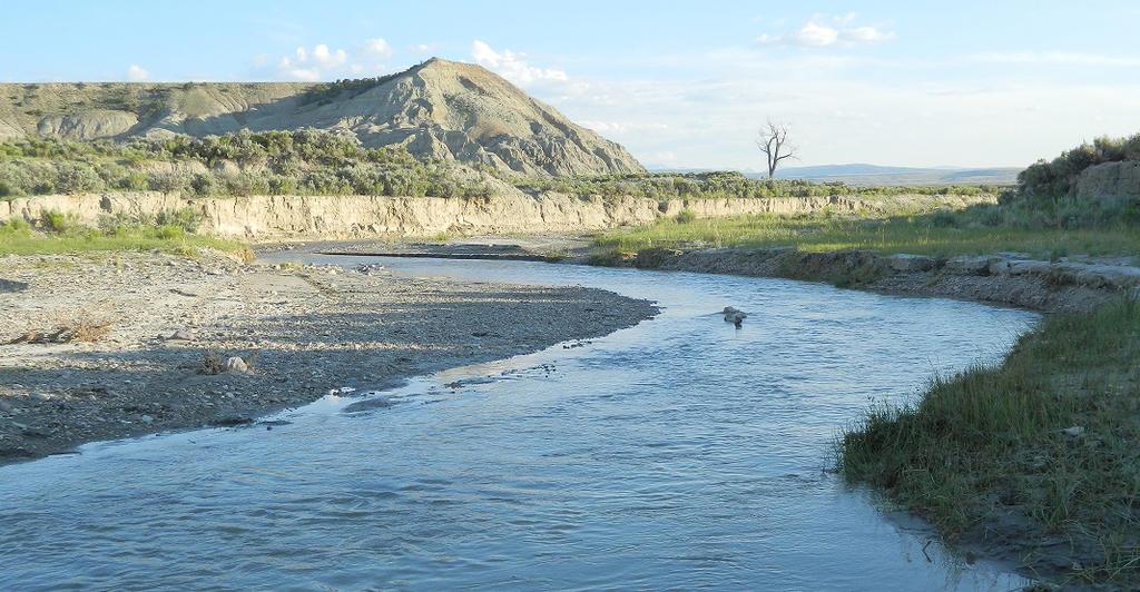 Cottonwood Creek Wyoming by LEXLOTHOR