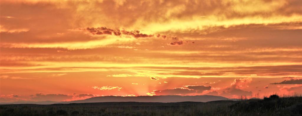 Copper Sunset