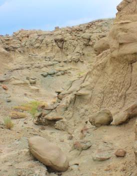 Sandstone Xenomorph