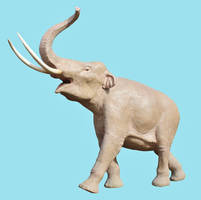 Mammuthus columbi life sized model stock