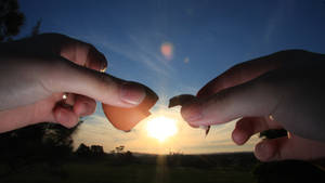 Hatching the sun