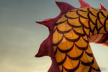 The Dragon by Grayda